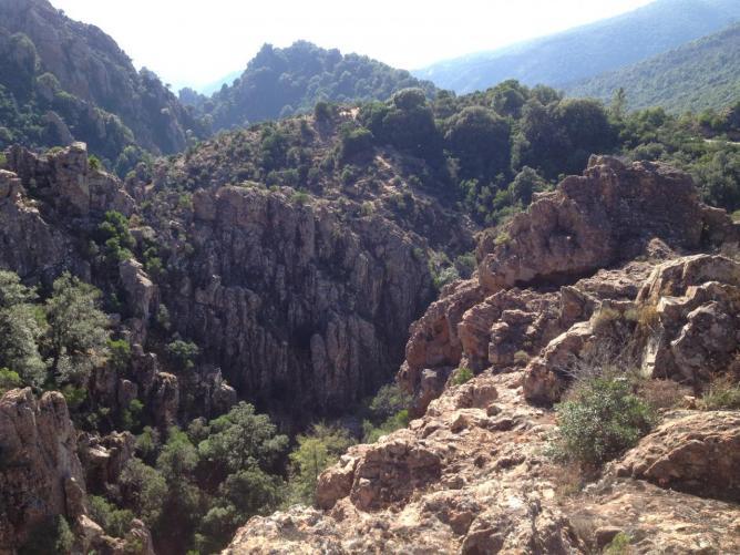 Sur les routes de l'Alta Rocca. A proximité